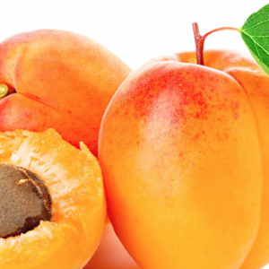Apricot Kernel Carrier Oil (Prunus armeniaca)