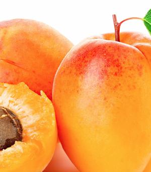 Apricot Kernel Carrier Oil (Prunus armeniaca)