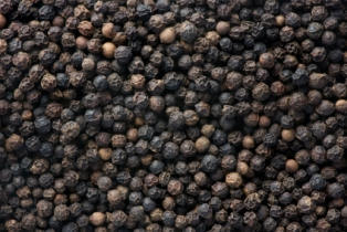 Black Pepper (Piper Nigrum)