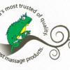 Gecko Massage Logo