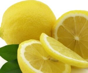 Lemon Organic Essential Oil (Citrus limonum)