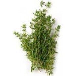 Thyme Organic Essential Oil (Thymus satureioides)