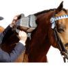 Thumper Equine Pro Massager