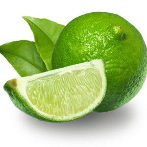 Persian lime Essential Oil Citrus latifolia Tanaka